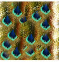 Fashion seamless pattern with colorful peacock vector