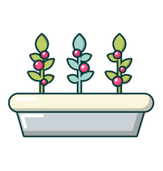 Outdoor potted plants icon cartoon style vector