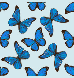 Seamless pattern with hand drawn colored morpho vector
