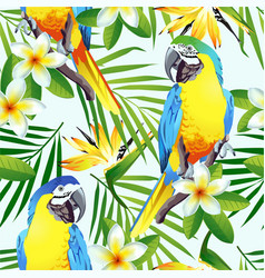 Tropic birds vector