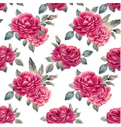 watercolor rose seamless pattern vector image