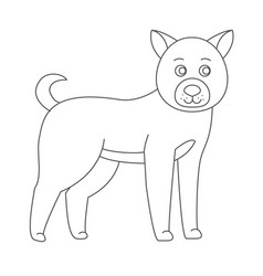 dog for coloring boo vector image