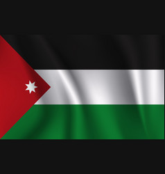 3d waving flag jordan vector