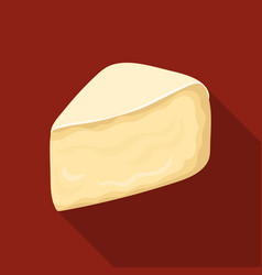 Camembertdifferent kinds of cheese single icon in vector