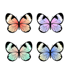 collection of exotic colorful butterflies vector image