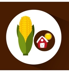 Farm countryside food corn design vector