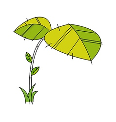 icon leaf vector image vector image