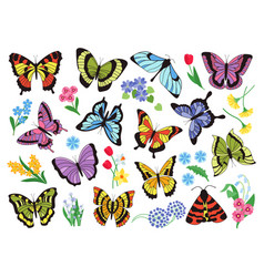 colored butterflies hand drawn simple collection vector image