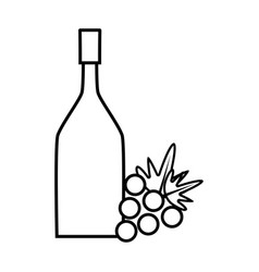Figure wine bottle with grape fruit vector