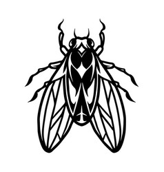 fly insect tattoo template vector image