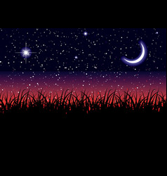 Midnight landscape vector