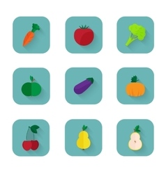 Modern flat icons a healthy lifestyle proper vector image