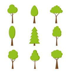 tree icon nature symbol in flat design vector image