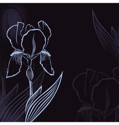 Iris background vector