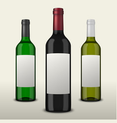 set of three realistic wine bottles with vector image vector image