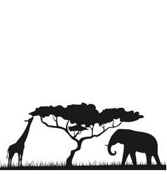 An african safari animal savannah silhouette vector