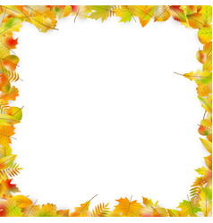 Autumn leaves frame isolated on white eps 10 vector