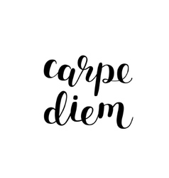 Carpe diem Seize the day Brush lettering vector