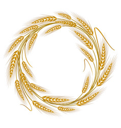 Circular frame wreath of wheat ears vector