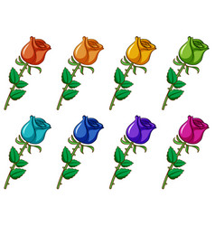 Isolated set flower in different colors vector