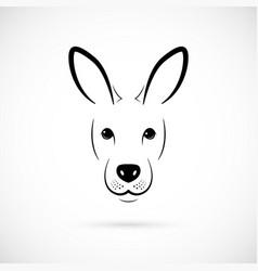 kangaroo muzzle silhouette mammal line icon vector image