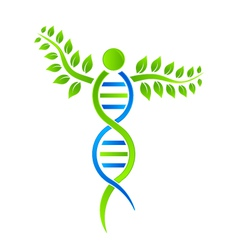 DNA Plant vector image