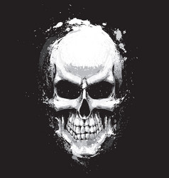 skull artistic splatter black n white vector image vector image