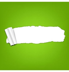 Ripped Green Paper Torn vector image