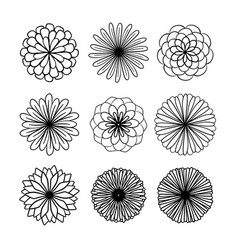 Collection hand drawn flowers vector