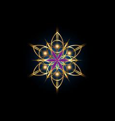 flower life symbol gold sacred geometry logo vector image