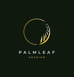 palm leaf logo design vector image
