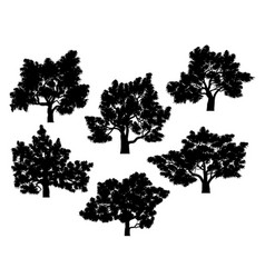 silhouettes of oak trees with leaves vector image