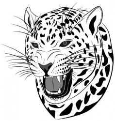 leopard tattoo vector image vector image