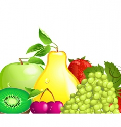 juicy fruit vector image vector image