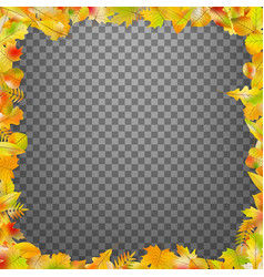 autumn leaves frame isolated eps 10 vector image