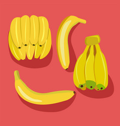 Bananas pack bunches of fresh banana fruits vector