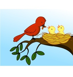 bird family vector image