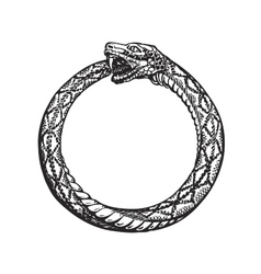 Ouroboros snake eating its own tail eternity vector