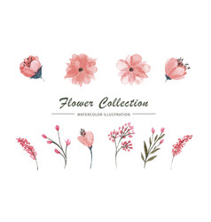 set of flowers and leaves on white vector image