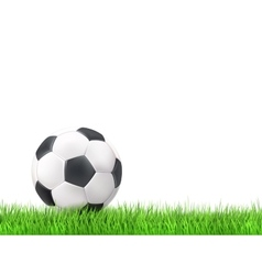 Soccer ball grass background vector image vector image