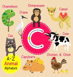 Letter c tracing camel cat capybara chameleon vector