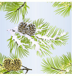 Seamless texture christmas pine tree with cone vector