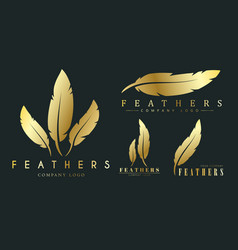 Set of gold logos with feathers for writers or vector