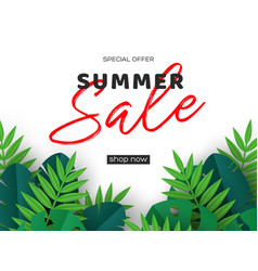 summer sale banner with tropical palm leaves vector image