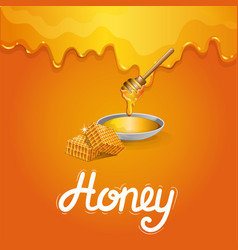 Tasty honey banner in cartoon style vector