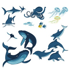 marine animals and fish vector image