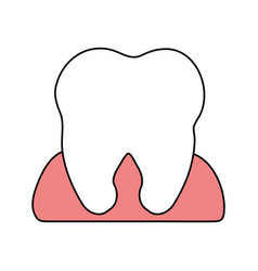 Color silhouette cartoon gum and front view tooth vector