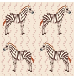 Pattern with zebras and flower stripes vector