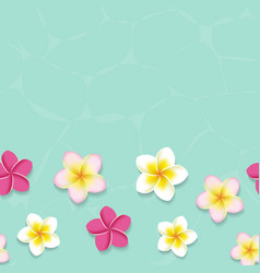 Tropical frangipani flowers in the water vector image vector image