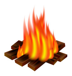 camp fire icon realistic style vector image